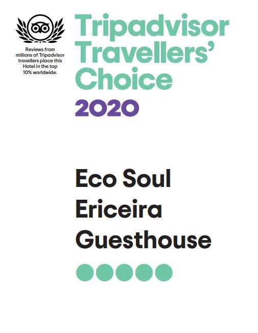 Premio Traveller´s Choice 2020_Eco Soul Ericeira Guesthouse_Trip Advisor